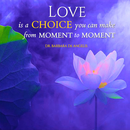 love-is-a-choice-book